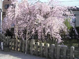 Rokunomiya1