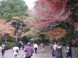 Komyoji2