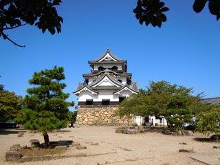 Hikonejo1