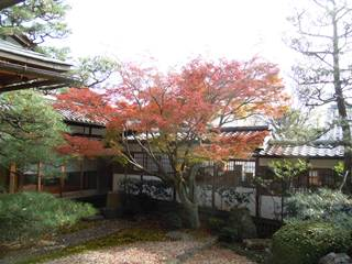 Gokounomiya3