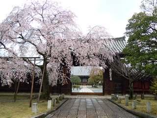 Myoukakuji1